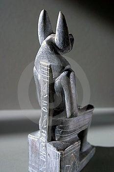Anubis - Vista Posteriore Fotografia Stock - Immagine: 8472