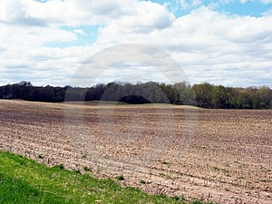 Field In Western Michigan Royalty Free Stock Images - Image: 8499