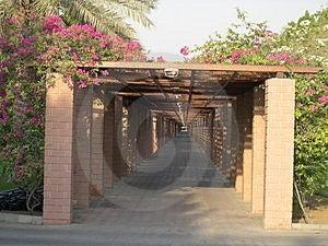 Путь прогулки через цветки Стоковые Изображения - изображение: 9414