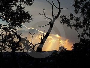 Puesta Del Sol Foto de archivo libre de regalías - Imagen: 10205