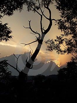 Solnedgång 1 Royaltyfria Bilder - Bild: 10329