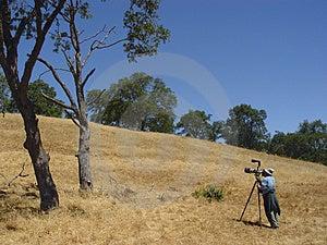 Birdwatcher Que Toma Imagens Fotografia de Stock - Imagem: 11252