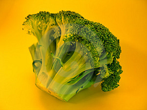 Colorful Brocolli I Stock Image - Image: 12471