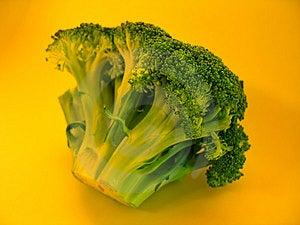 Colorful Brocolli I Stock Image - Image: 12471