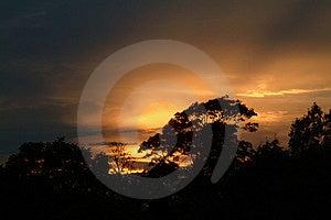 Golden Dusk Stock Image - Image: 12741
