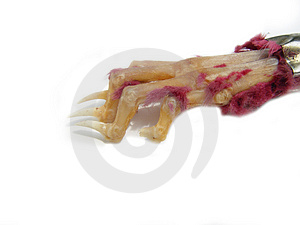 Unlucky Rabbits Foot Stock Photos - Image: 13063