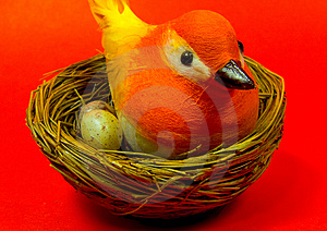 Bird Nest Royalty Free Stock Photo - Image: 13365