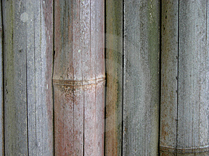 Bamboo Fence Stock Images - Image: 13784