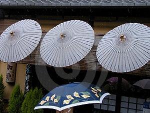 Umbrellas Stock Photo - Image: 15790