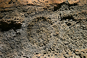 Textura da rocha de Pourous Fotos de Stock Royalty Free