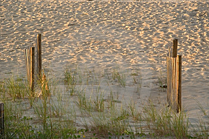 Two Fences In The Dunes Stock Photography - Image: 16782