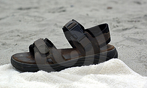 Brown Sandal Royalty Free Stock Photography - Image: 17607