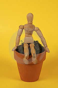 Sitting On The Pot Royalty Free Stock Photos - Image: 19468