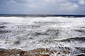 Seascape Free Stock Photography