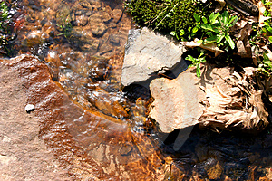 Close Up Of Stream Stock Images