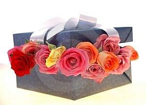 Gift Box Free Stock Photo