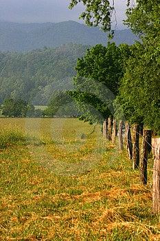 Fenceline Royalty Free Stock Image