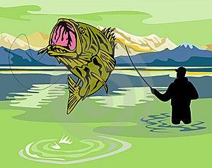 Fisherman Catching Bass Royalty Free Stock Photo - Image: 10013905