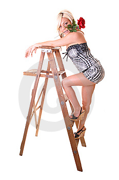 Girl On Stepladder. Stock Image - Image: 10017781