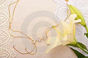 Chain And Lily Royalty Free Stock Photo - Image: 10018725