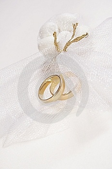 Two Wedding Rings. Royalty Free Stock Photo - Image: 10023285