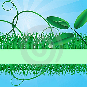 Ecological Banner With A Grass Stock Photography - Image: 10023842