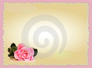 Frame For Picture With Rose Royalty Free Stock Photo - Image: 10034855
