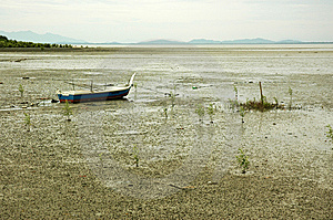 Low Tide Mud Royalty Free Stock Photography - Image: 10035337