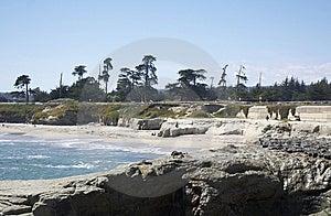Santa Cruse Shore Royalty Free Stock Photography - Image: 10036257