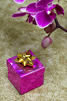 Gift Box With Orchid Stock Images - Image: 10038444