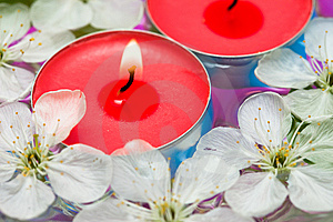 Candle With Spring Flowers Stock Image - Image: 10038661