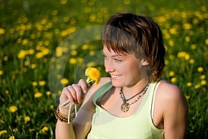Dandelions Glade Royalty Free Stock Images - Image: 10050269