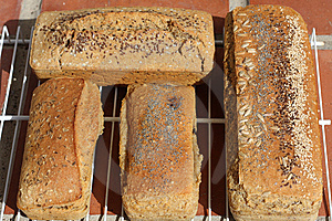 Bread Royalty Free Stock Image - Image: 10054986
