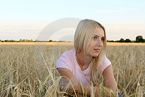 The Girl In The Wheat Royalty Free Stock Images - Image: 10066479