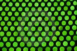 Green Abstract Stock Photos - Image: 10069763