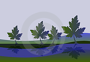 Leaves Reflection Background Free Stock Photo