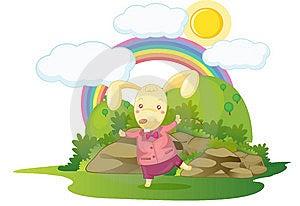 Rabbit Stock Photo - Image: 10082970