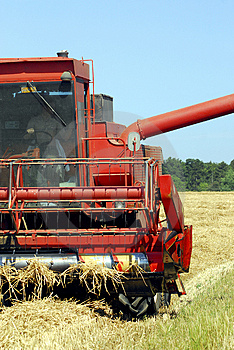 Harvest Time Royalty Free Stock Photos - Image: 1012818