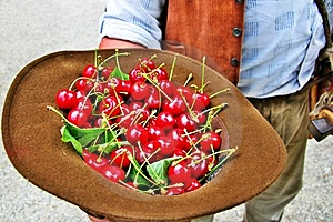 Cherries Stock Images - Image: 10101954