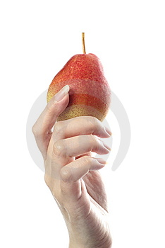 Red Blush Pear In Female Hand Royalty Free Stock Image - Image: 10102796