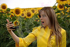 Wondering Woman With Mirror In Sunflowers Royalty Free Stock Image - Image: 10106726