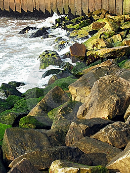 Rocky Coast Royalty Free Stock Images - Image: 10113059