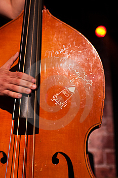 Classical Contrabass Playing Royalty Free Stock Photo - Image: 10113115