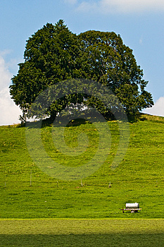 Landscape Of Grassland With Trees And Hill Royalty Free Stock Images - Image: 10119969