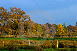 Landscape Of A Farmland With Colorful Autumn Trees Royalty Free Stock Photography - Image: 10121227