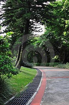 4920个庭院路径 库存图片 - 图片: 10131034