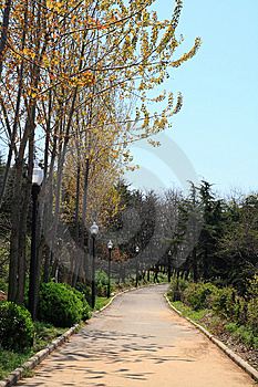 Quiet Alley In Park Stock Photography - Image: 10131402