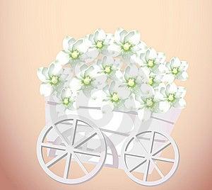 Pushcart And Flower Royalty Free Stock Image - Image: 10132526