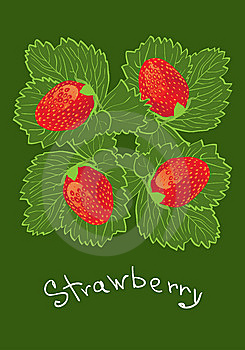 Strawberry Royalty Free Stock Image - Image: 10138086