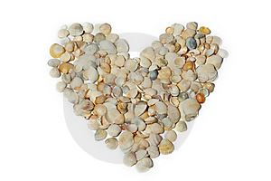 Heart Of Sea Mussels Isolated Stock Photo - Image: 10138180